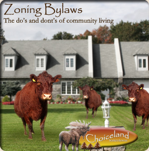 Zoning Bylaws